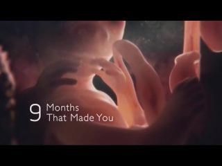 BBC: Девять месяцев, которые создают нас. Часть 2. Вопреки всему (2015) - Видео Dailymotion