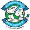 Хоккейный клуб Арктик-Университет