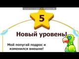 «Вырасти попугая» под музыку гта 4 - ()()()()()(). Picrolla