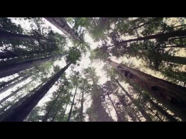 Hanski New beginning KKundAAlini music video 4