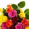 Цветы розы оптом Кения MILELE