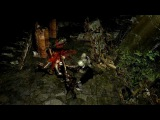 The Templar - Path of Exile