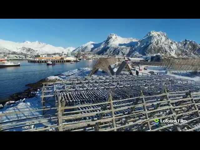 Travel to Lofoten Islands Norway? Take a look at this! Best of 2015 (HD)