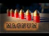 Пневматическая винтовка и бронебойные пули//Тест