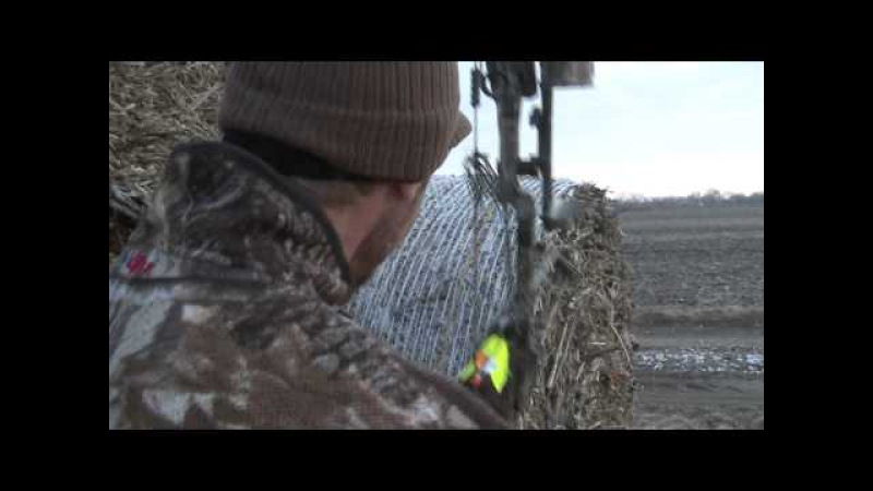 Goose Bow Kill on the fly.