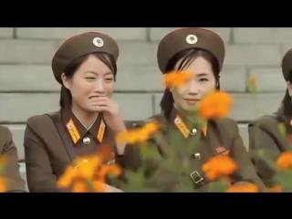 корейцы жгут. Группа крови на корейском.