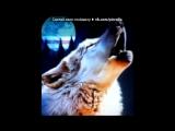 С моей стены под музыку Eminem - Lose Yourself (OST 8 миля). Picrolla