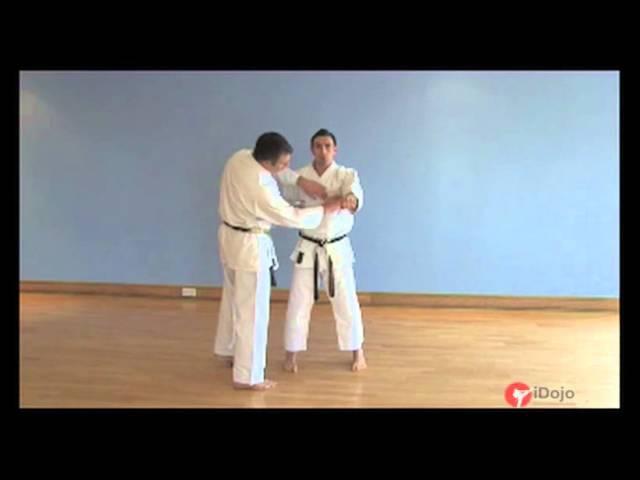 Karate - Intro to Goju-Ryu basics - punches and blocks