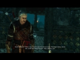иди работай сука (The Witcher 2)