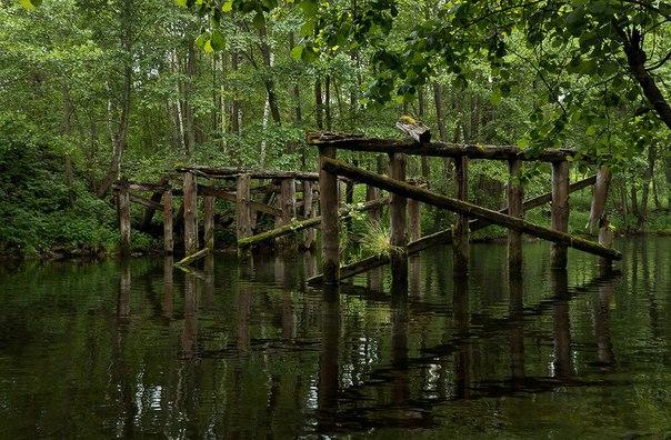 """ЭнциклопедиЯ кладоискателЯ """" поиск возле старых мостов."""