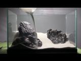 Aquascaping Lab - Tutorial Iwagumi Aquarium (size 40 x 25 x 25H 25L) Seiryu Stone style PART 1 http://vk.com/natureaqua_fish
