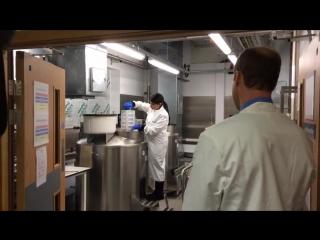 Уильям в Центре Молекулярной Патологии Королевского госпиталя Марсден