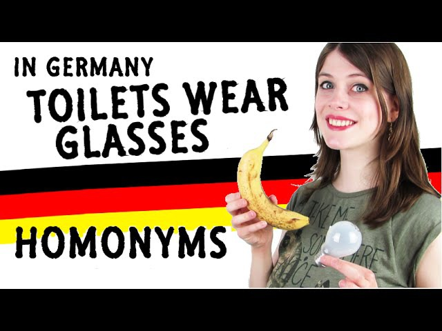 In Germany TOILETS wear GLASSES   25 German HOMONYMS