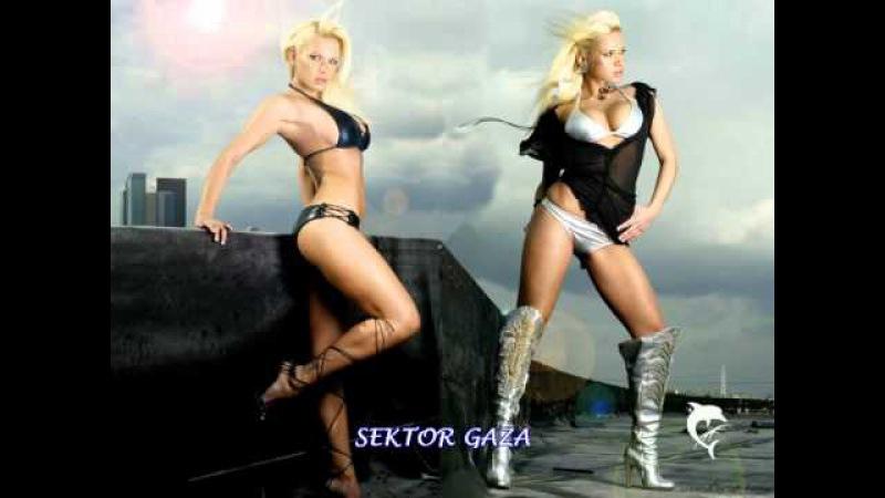 Sektor Gaza - Vzyal vinu na sebja ( Cj Slepnev Remix 2010 )