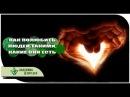 Академия Целителей - укол Любви, отношения | Духовные потоки отца небесного | Николай Пейчев