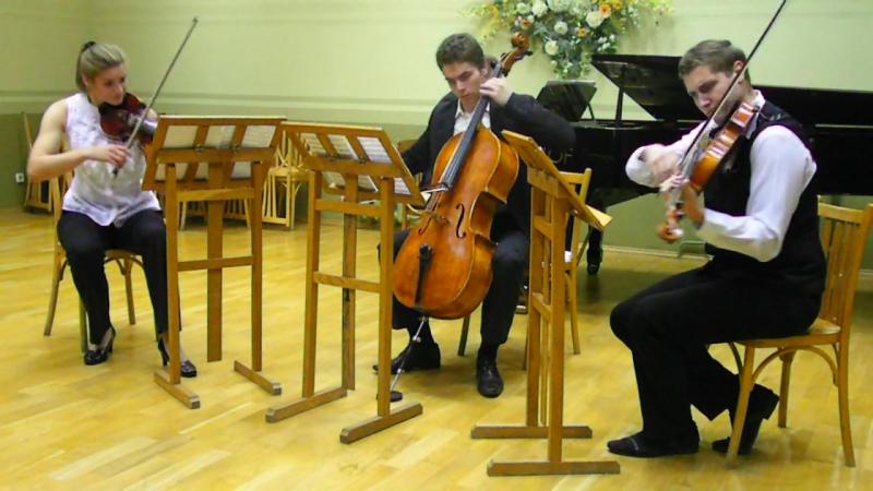Александр Данилов (фортепиано), Ефросинья Верёвка (скрипка), Николай Теран (альт), Елевферий Гойко (виолончель).