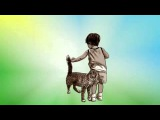 Об истинной любви Притча про кота которого не любили люди