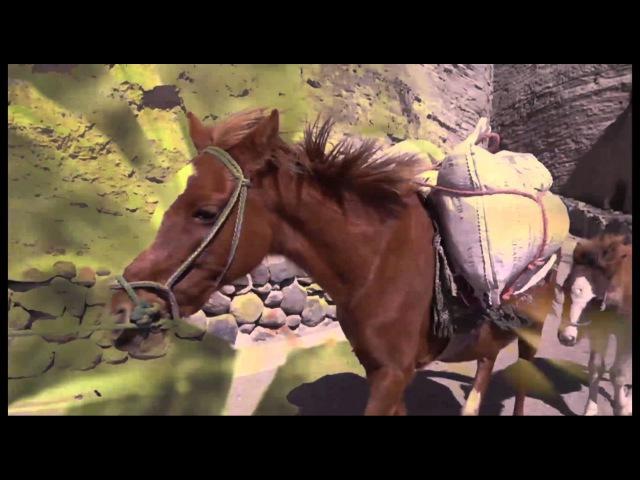 Nicola Cruz - Prender El Alma (Music Video)