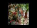 «Последние дни в Хургаде» под музыку Восточная музыка - Арабская ночь. Picrolla
