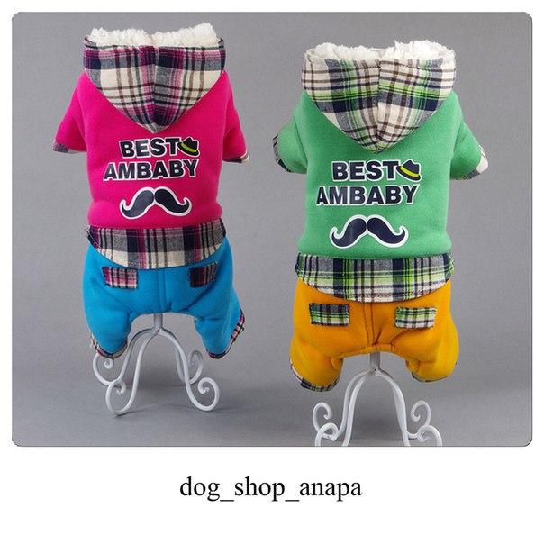 Интернет магазин одежды для собак Jp_PWkFtWzU