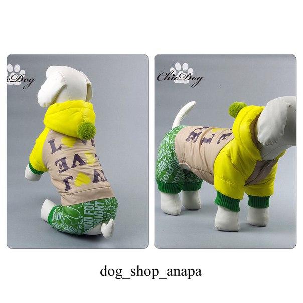Интернет магазин одежды для собак RAqYxWA0oN8