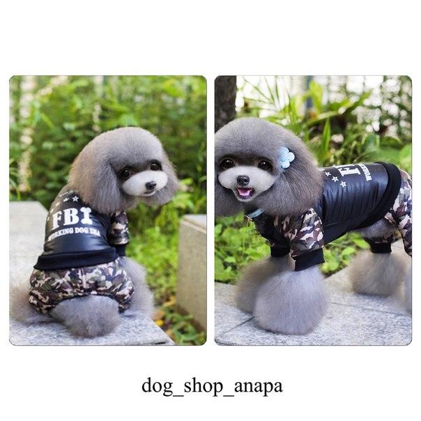 Интернет магазин одежды для собак I12XoARAyBA