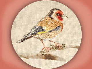 how to embroider a goldfinch in long & short stitch