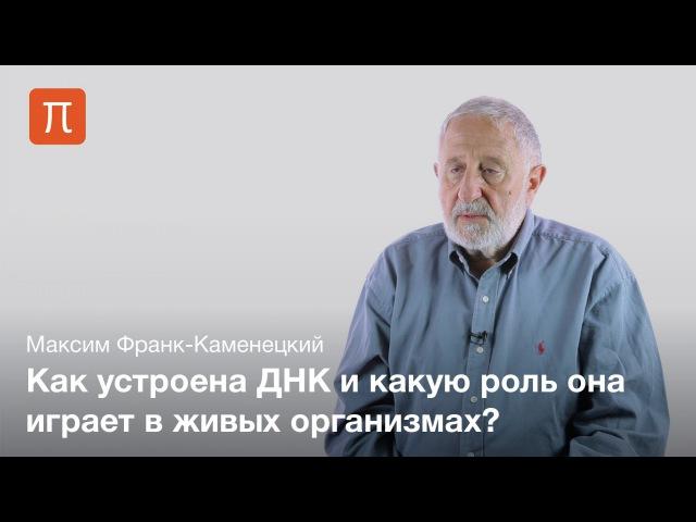 3. Каноническая структура ДНК — Максим Франк-Каменецкий