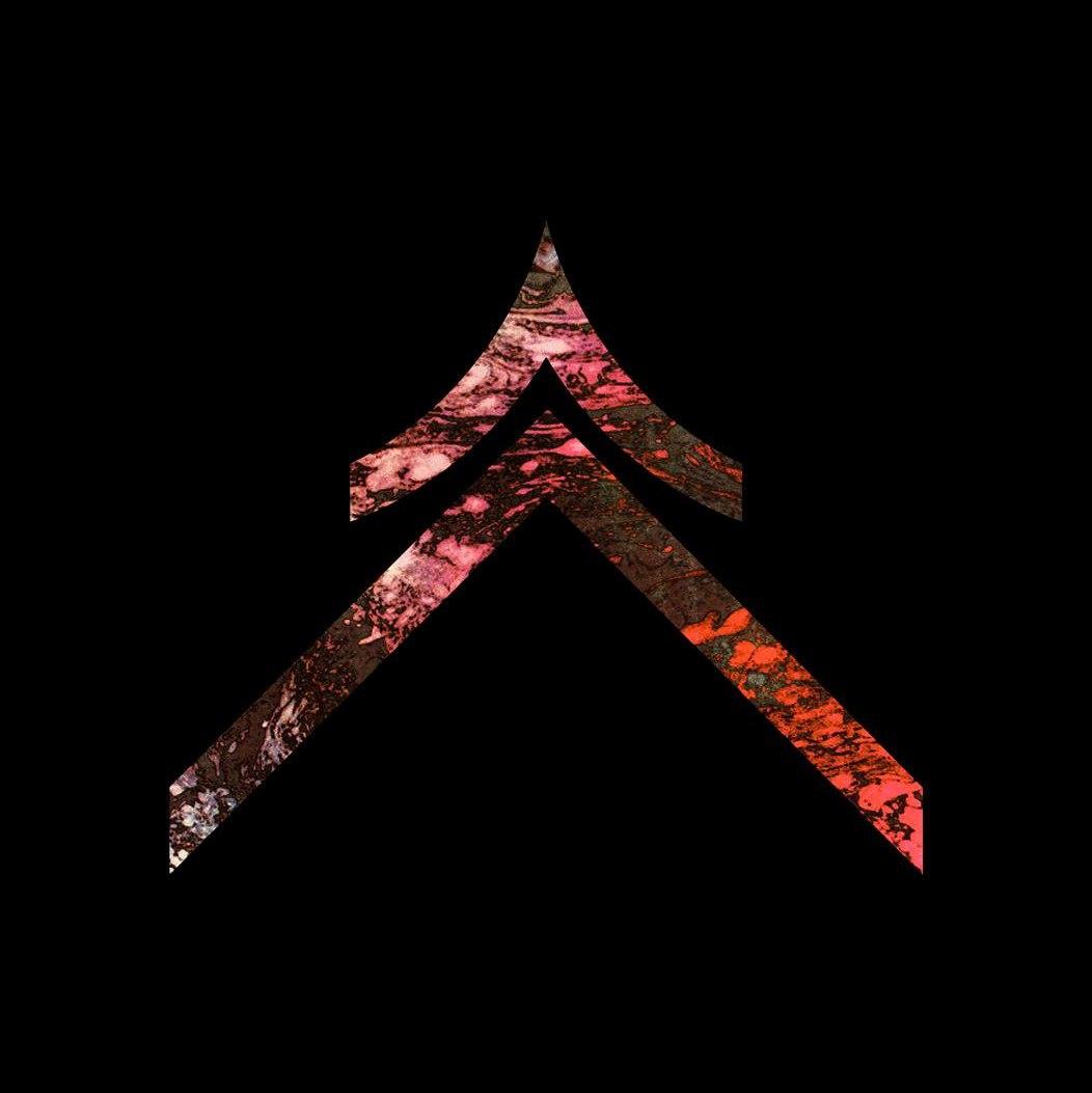 DVSR - Shutdown... [single] (2015)