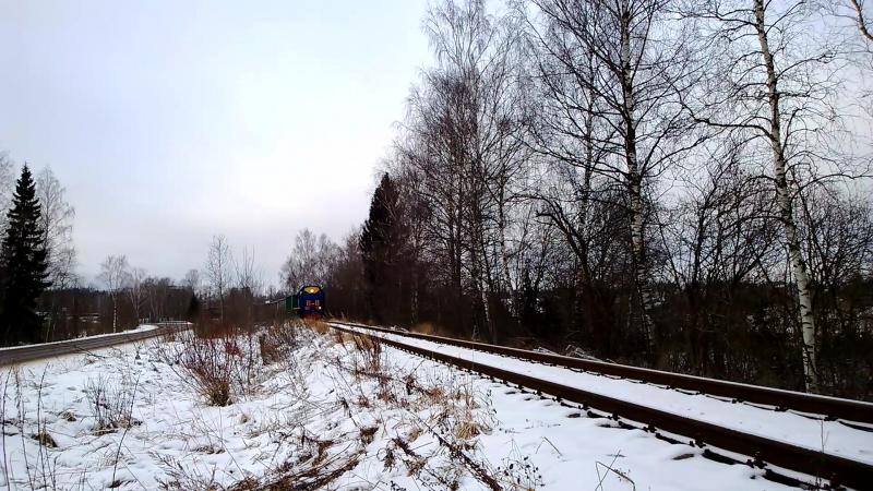 Тепловоз ТЭМ2У 9308 с вагонами следует на станцию Бужаниново