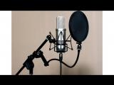 [timedub] Часть [3 из 15] выбор микрофона / Как ( Хочу) озвучивать аниме? (дабберы, таймеры)