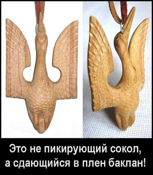 http://cs629412.vk.me/v629412638/e8f0/7XcuYUmd9yI.jpg