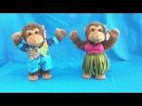 Символ 2016 года - обезьяны , танцуют танец Ламбада