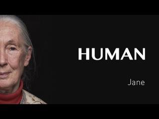 Интервью с Джейн Гудолл