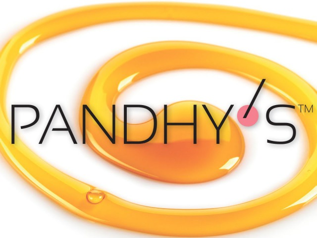 Презентация продуктов PANDHY'S
