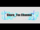 Intro Shara_Fox Cannel