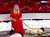 Прямой эфир. Возвращение Дианы слепой девушке вернули собаку-поводыря