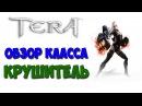 Обзор класса КРУШИТЕЛЬ - TERA Online (BRAWLER)
