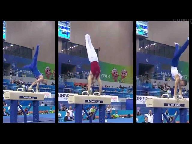 2014 Mens Gymnastics Evolution