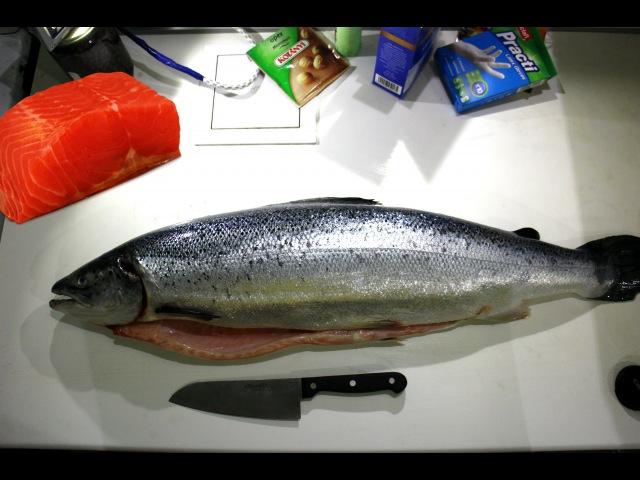 Засолка красной рыбы. Разделка рыбы. Жареное рыбное филе.