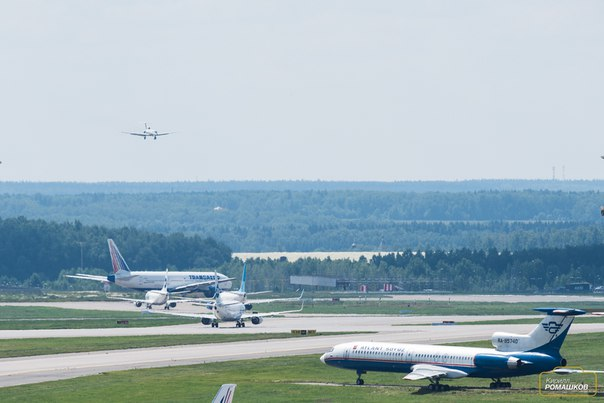 Трансфер из Брянска в Москву в аэропорты Домодедово