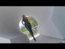 PornoStar ∞ Allie Eve Knox black spandex leggins blonde HD 720, all sex, big ass блондинку в обтягивающих леггинсах трахают секс