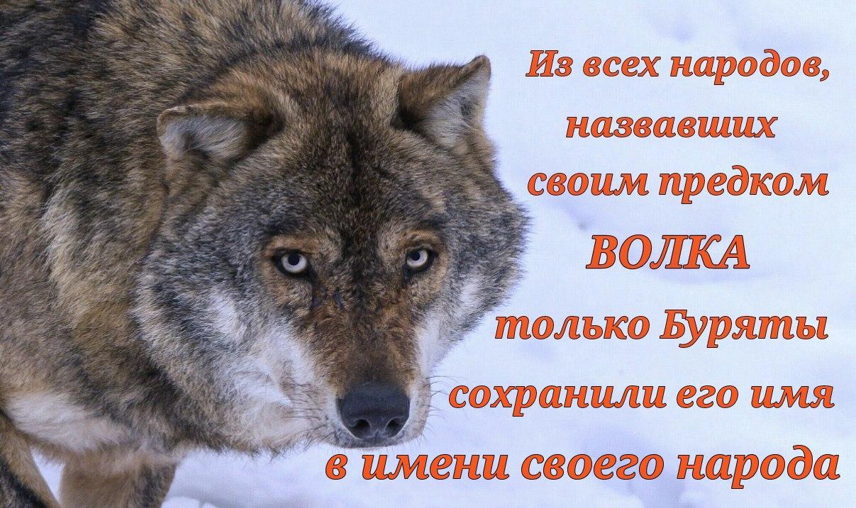 Uxx4NblSWnA.jpg