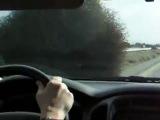 Attack of the Giant California Tumbleweeds