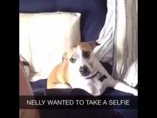 Нелли захотела сделать селфи со мной
