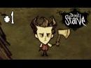 Don't Starve Прохождение: 1 - Начало выживания!