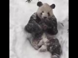 Я, когда выпало много снега