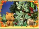 Сказки для самых маленьких 20. Жадный медвежонок — Шишкина школа