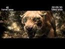 Киноляпы [2013] После нашей эры [After Earth]