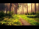 Chris Wonderful - I Love You (Original Mix) [HQ]
